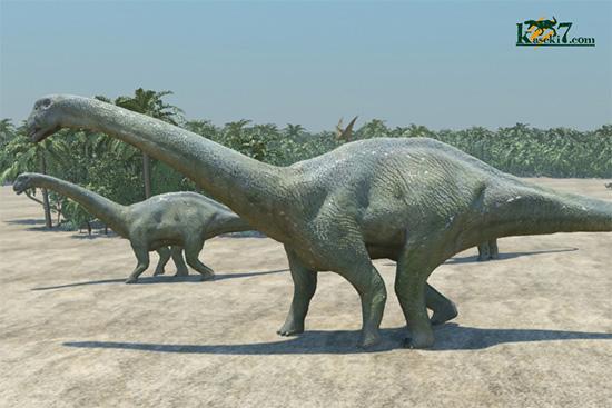 アパトサウルス画像