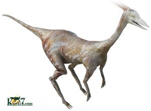 ダチョウ恐竜オルニトミムス(Ornithomimus)