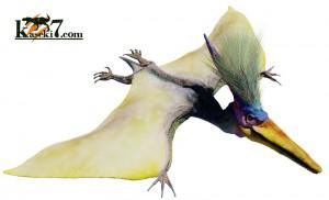 プテラノドン(化石セブンオリジナルCG)