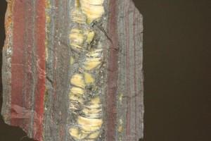縞状鉄鉱層は鉄バクテリアの作用(クリックするとページへとびます)