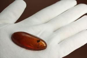 幅4cm超のドミニカ琥箔(Amber)