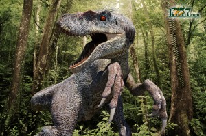 凶暴なかぎ爪をもつ小型恐竜