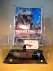 ティラノサウルスの前上顎骨歯