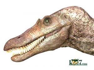 中生代白亜紀の肉食恐竜スピノサウルス(Spinosaurus)