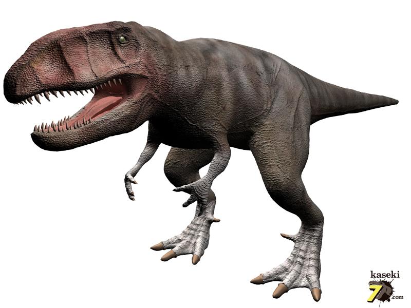 カルカロドンとサウルス