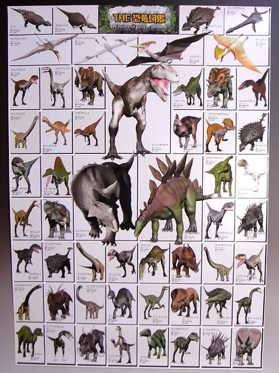 お客様の声 恐竜ポスター | 化石セブンの最新情報
