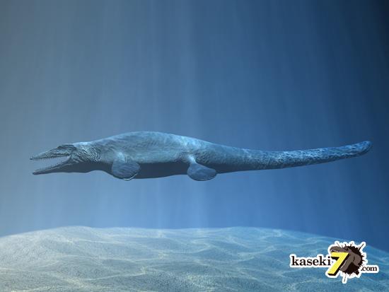 海のティラノサウルスことモササウルス2
