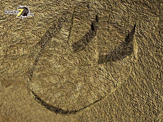 恐竜の足跡(フットプリント)化石。へこんでいる一般的なもの