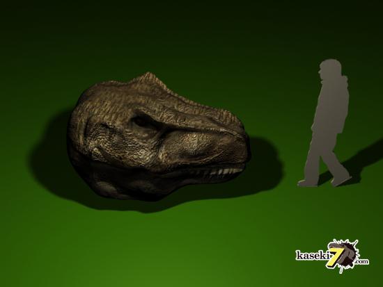ティラノサウルス頭骨と人間の比較2
