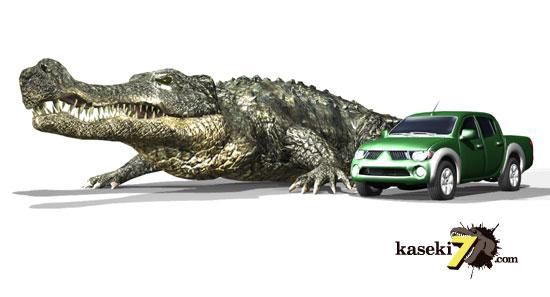 【速報】超巨大ワニ 捕獲される いくらなんでもデカすぎる これはもう恐竜だろ [無断転載禁止]©2ch.netYouTube動画>4本 ->画像>73枚