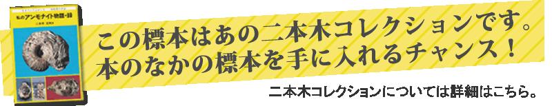 二本木認定コレクション「私のアンモナイト物語・録」23ページ掲載。北海道産アンモナイトノジュール化石