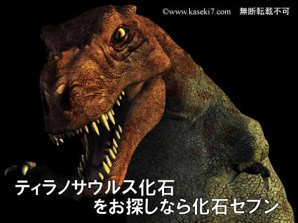 ティラノサウルス化石をお探しなら化石セブン