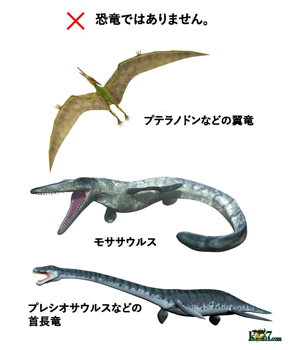 恐竜と勘違いされやすい生物