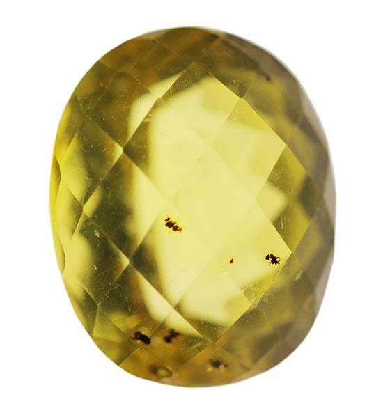 化石のなかでも琥珀は重さをカラットで示すことがある。