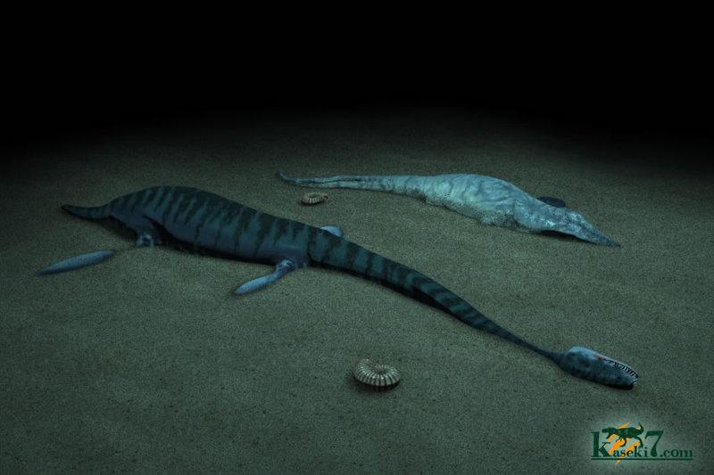 いったい化石はどのようにしてできるのでしょうか?