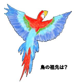 鳥の祖先は恐竜?