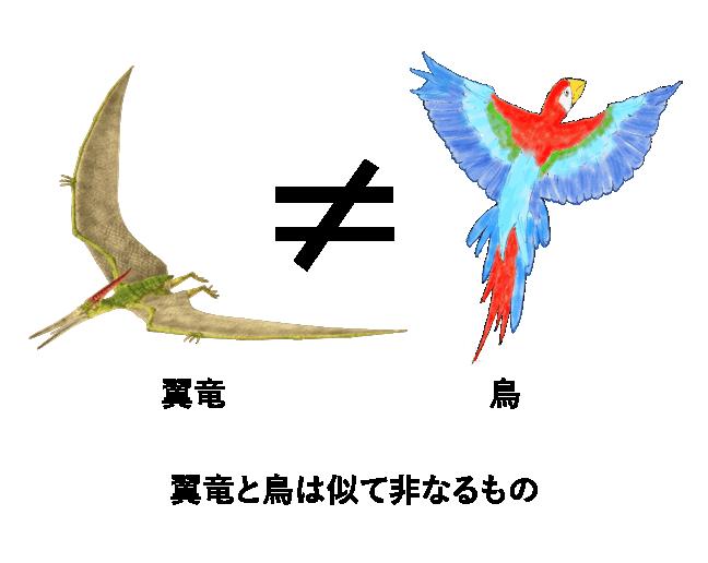 翼竜と鳥は似て非なるもの
