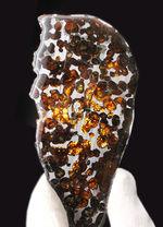 透明度が高く燦々と輝くフレッシュなかんらん石にご注目ください!2016年に発見された新しいパラサイト隕石(本体防錆処理済み)