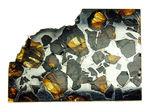 最も美しい隕石とされる石鉄隕石に分類されるブラヒン隕石です。宇宙空間で形成されたカンラン石と鉄ニッケル合金の不思議な模様をお楽しみください(空気を遮断する専用保存ケース付き)。