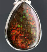 ドラゴンスキン!生物起源の宝石として名高いアンモライト(Ammolite)を使ったペンダントトップ。金具はスターリングシルバー。チェーン、革紐、ジュエリーケース付き