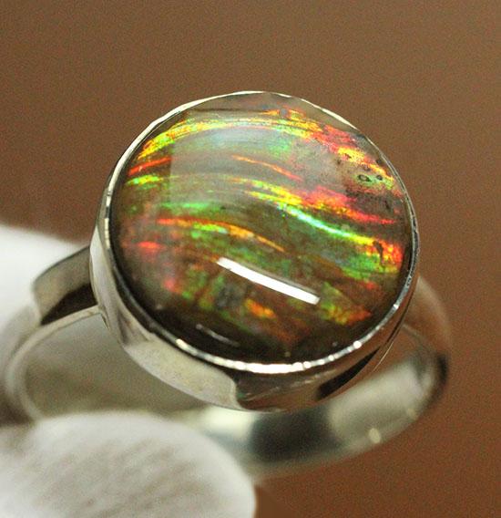 世界に一つのオリジナルリングはいかが?上品かつ濃い輝き、光るアンモナイトの指輪(男女兼用)/中生代白亜紀(1億3500万 -- 6500万年前)【an1149】
