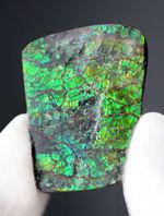グリーン、時にブルー、ドラゴンスキンと呼ばれるテクスチュア構造をなすアンモライト(Ammolite)ピース。