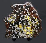 ビッグサイズ!煌々と輝くカンラン石が保存されたケニヤ産パラサイト隕石(本体防錆処理済み)。世界で最も美しい隕石と評される美しきパラサイト隕石