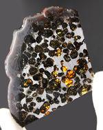 フレッシュなかんらん石が美しい、そしてデカい!!手のひらサイズの大判。ケニヤ産のパラサイト隕石(本体防錆処理済み)。