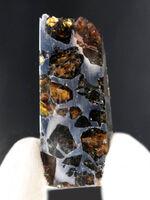 極厚タイプ!はるか彼方より飛来した人智を超えた存在、石鉄隕石、ブラヒン・パラサイト