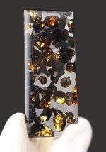 フレッシュなかんらん石にご注目!2016年発見、ケニヤ産の新しいパラサイト隕石(本体防錆処理済み)。オリジナルケース入。
