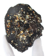 サイズ良し、状態良し!パラサイト隕石にご興味のある方におすすめしたい上質品、ケニヤ産パラサイト隕石(本体防錆処理済み)