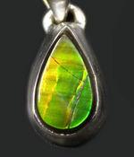 新緑の若葉のような美しい色合い!生物起源の宝石として1981年に世界宝石連盟に正式に宝石として認定されたアンモライト(Ammolite)を使ったペンダントトップ