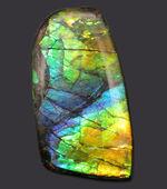 希少色の青を見ることができる高品位のアンモライト(Ammolite)のピースの化石。見る角度によって色合いが変化する高品位化石。