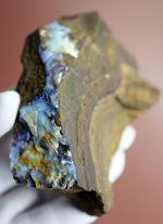 相当量がオパール化した、非常に珍しい珪化木。コレクション価値高い!