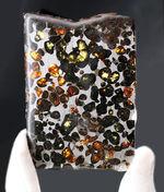 ビッグサイズ!オリーブグリーンに輝くカンラン石が存在する、極めて上質なケニア産のパラサイト隕石(本体防錆処理済み)
