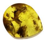 厚みあり、100円玉より一回り大きい、バルティックアンバー(Amber)のカボション(丸く磨いたもの)