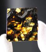 「素晴らしい」という名前が付けられた米国カンザス州産のパラサイト隕石、アドミア隕石(Admire meteorite)。専用ケース付き