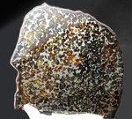 スペシャルサイズ!440グラムオーバー!20センチに迫る、並外れた大きさのケニア・セリコ産パラサイト隕石(本体防錆処理済み)
