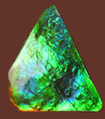驚異的な色の変化をお楽しみください。グリーン&ブルー!宝石アンモライト(Ammolite)の高品位ピース。保存ケース付き。