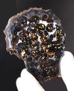 宇宙が作り出した宝石!。透明度が高い状態の良いかんらん石を多数含む、ケニア産のパラサイト隕石(本体防錆処理済み)