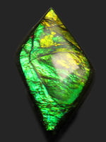 新緑を思わせる、美しい緑を呈するアンモライト(Ammolite)のピースを使ったピンブローチ