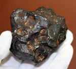 鉄隕石(Iron Meteorite)をコレクションしたい人に朗報!落下地点、落下年不詳ゆえ、お値打ち価格でのご紹介。
