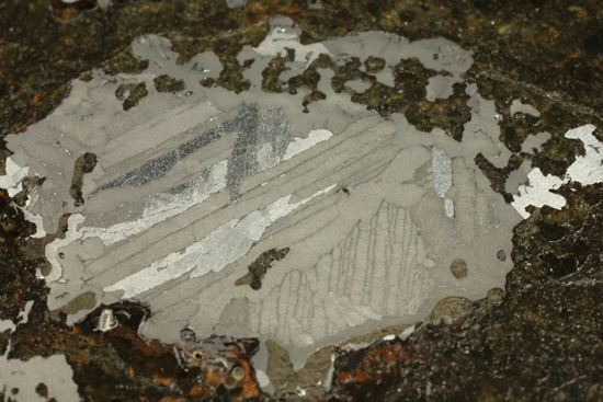 博物館クラス!!コレクターが憧れる標本!1879年5月10日に落下したメソシデライト隕石