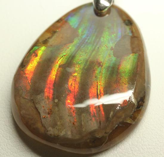 濃く輝く!グラデーションが美しいアンモナイトペンダントトップ(Ammonite)