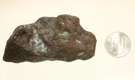チャンスプライス!鉄隕石(Meteorite)産地不明ゆえに格安販売