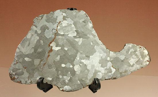 鉄隕石カンポ・デル・シエロのスライス標本(144g)/ 【ot765】