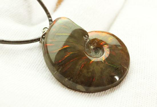 両面同程度に光ります!イリデッセンスアンモナイトのペンダントトップ(Ammonite)/中生代白亜紀(1億3500万 -- 6500万年前)【an1079】