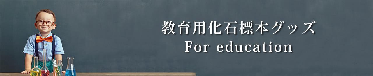 教育用化石・グッズ・恐竜フィギュア