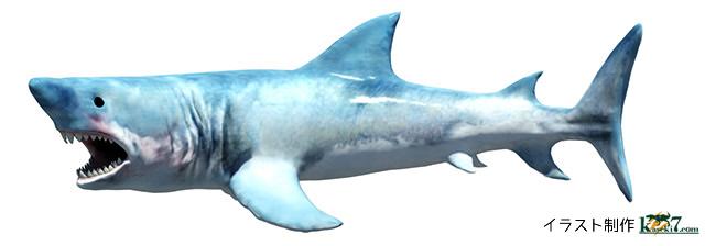 軟骨魚類メガロドン