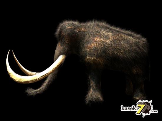 マンモス(Mammuthus) ってどんな生き物?